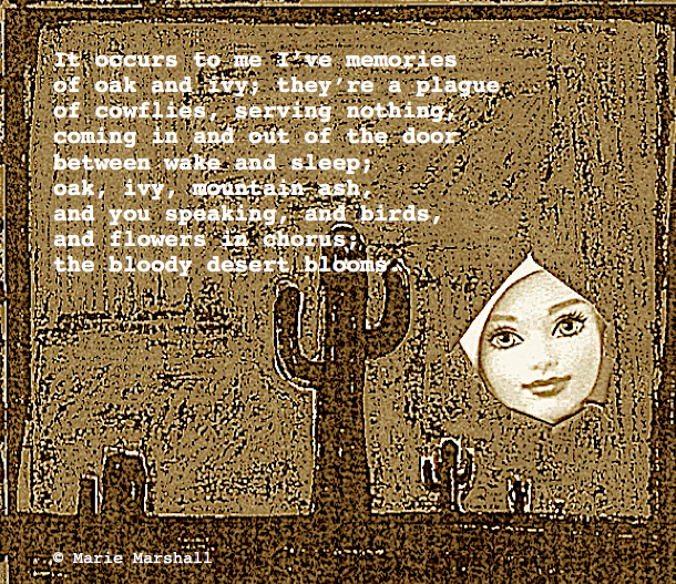 desert poem 20